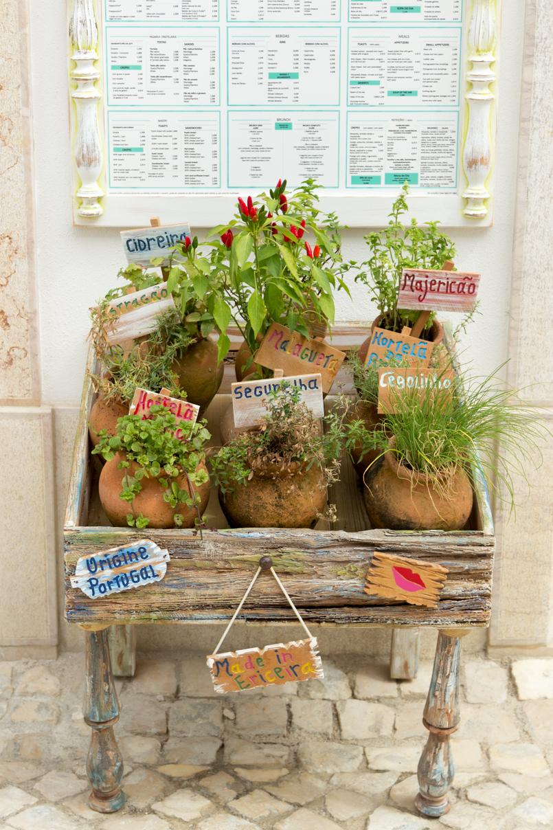 Le Fashionaire Ericeira em postais portugal ericeira blogueira postal plantas vasos cidreira manjericao 5670 PT 805x1208