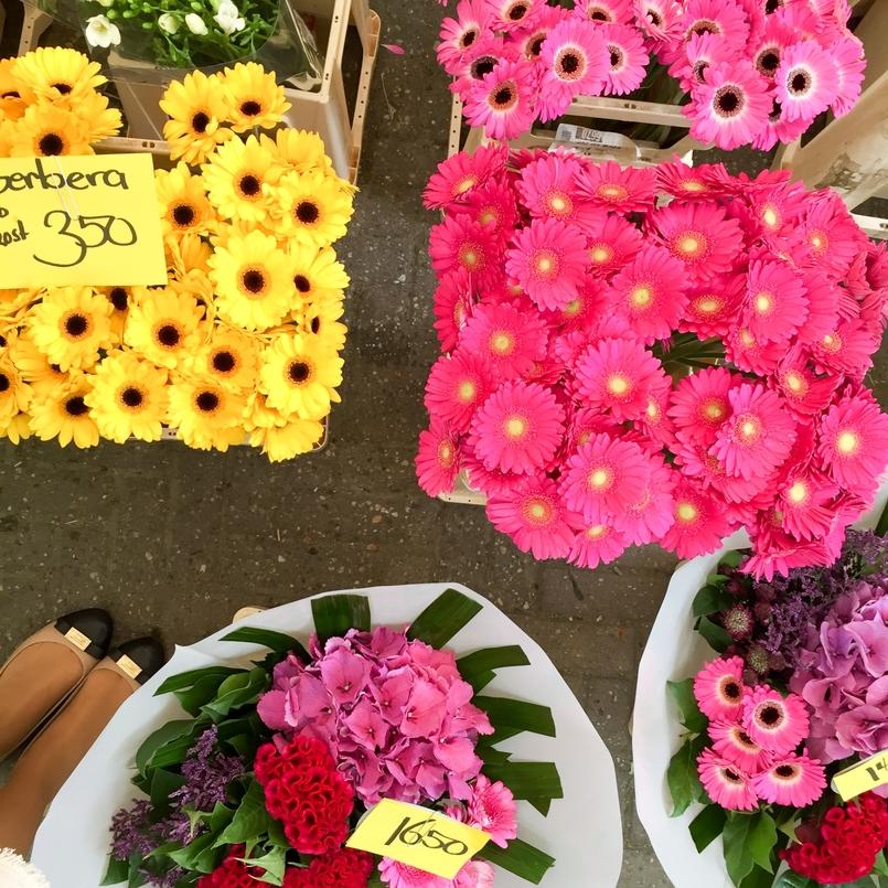 Le Fashionaire Amsterdão: Dicas e sítios giros blogueira catarine martins amesterdao roteiro flores 6348 PT 805x805