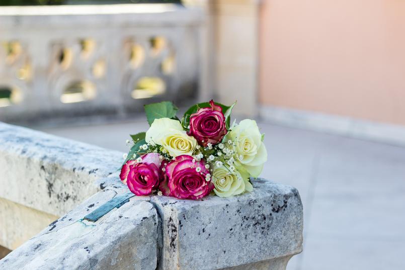 Le Fashionaire Por que é que a Mango se tornou uma das minhas lojas favoritas rosas purpura branco 6103 PT 805x537