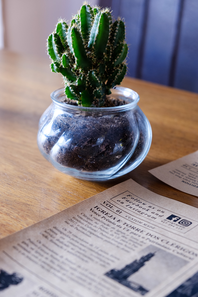 Le Fashionaire Cool spot in town: Negra green cactus black newspaper 2227 EN 805x1208