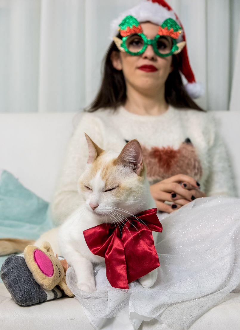 Le Fashionaire Merry Christmas my loves! kiko cute kitty cat silk bow white fluffy fox jumper zara kids reindeer pink grey stripes primark green glasses 4582 EN 805x1107