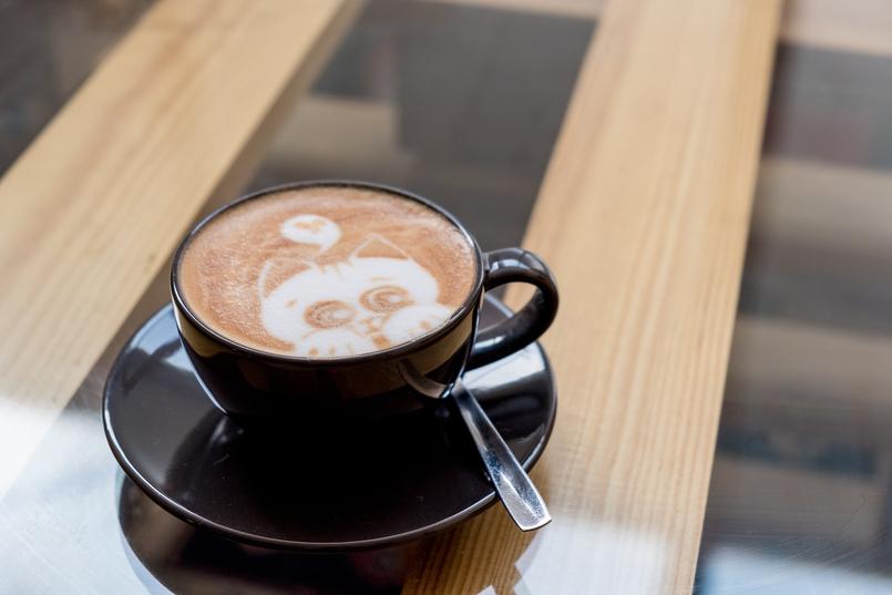 Le Fashionaire Cafés giros no Porto:  Apartamento cafe apartamento porto cappuccino desenho gatinho 7625 PT 805x537